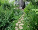 The stone pathway ends at a viewing seat at the base of a beautiful old Stone Pine tree