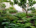 A potager of fruits, vegetables and herbs in the rear garden