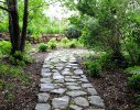 A granite stone pathway creates strong lines and movement through the forest
