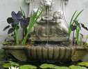 A classical water feature is home to a number of frogs